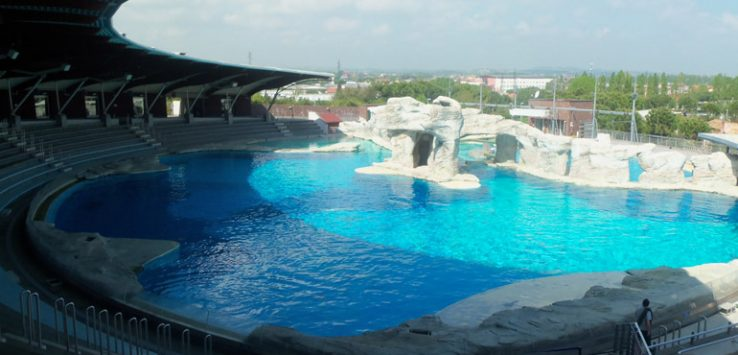 Biggest dolphin lagoon in Europe