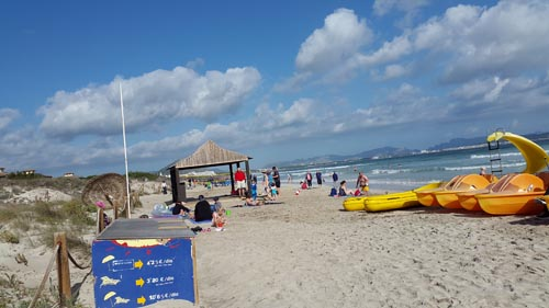 View of Beach in Alcudia Pins