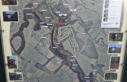 Map of walks at Chatelherault Country Park