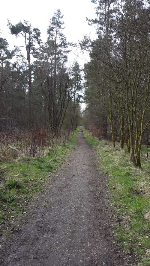 Trails at Beecraigs Country Park
