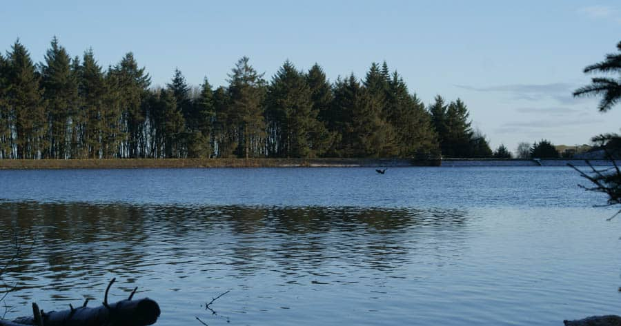 Beecraigs Country Park