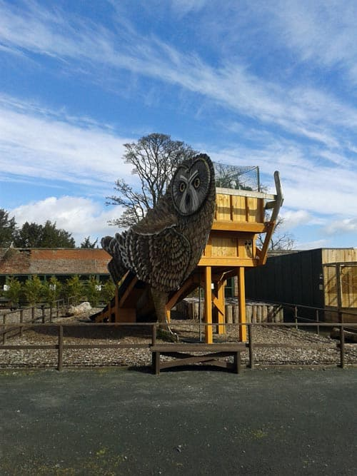 Play park at Scottish Owl Centre