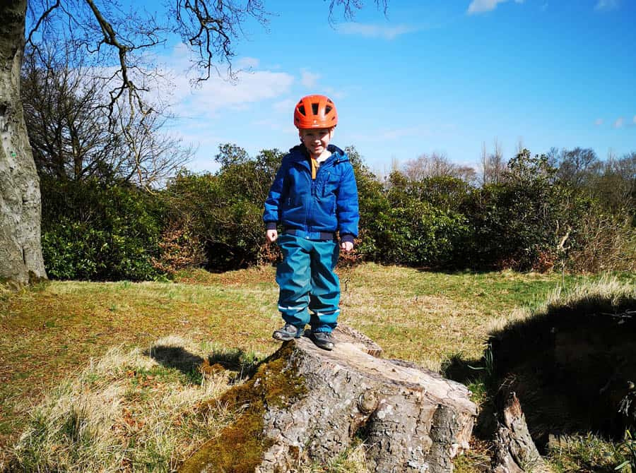 young boy standing on a tree stump wearing a bike helmet