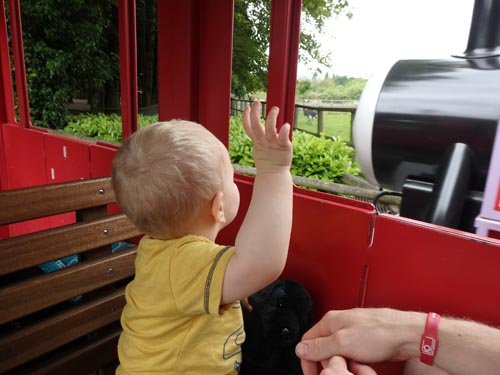 On Rosie at Drayton Manor