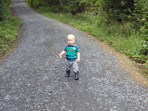 Toddler out walking in forest
