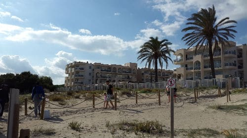 view of the alcudia pins hotel