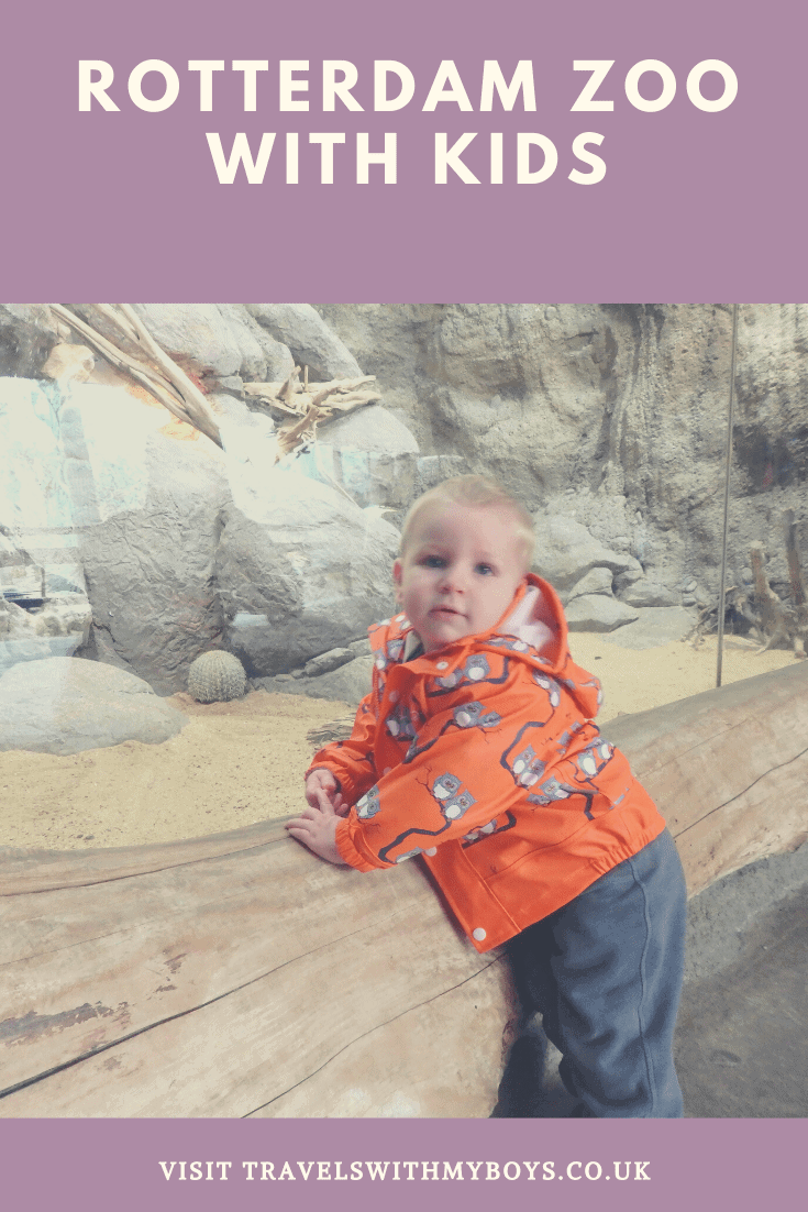 A review on Rotterdam Zoo with Kids