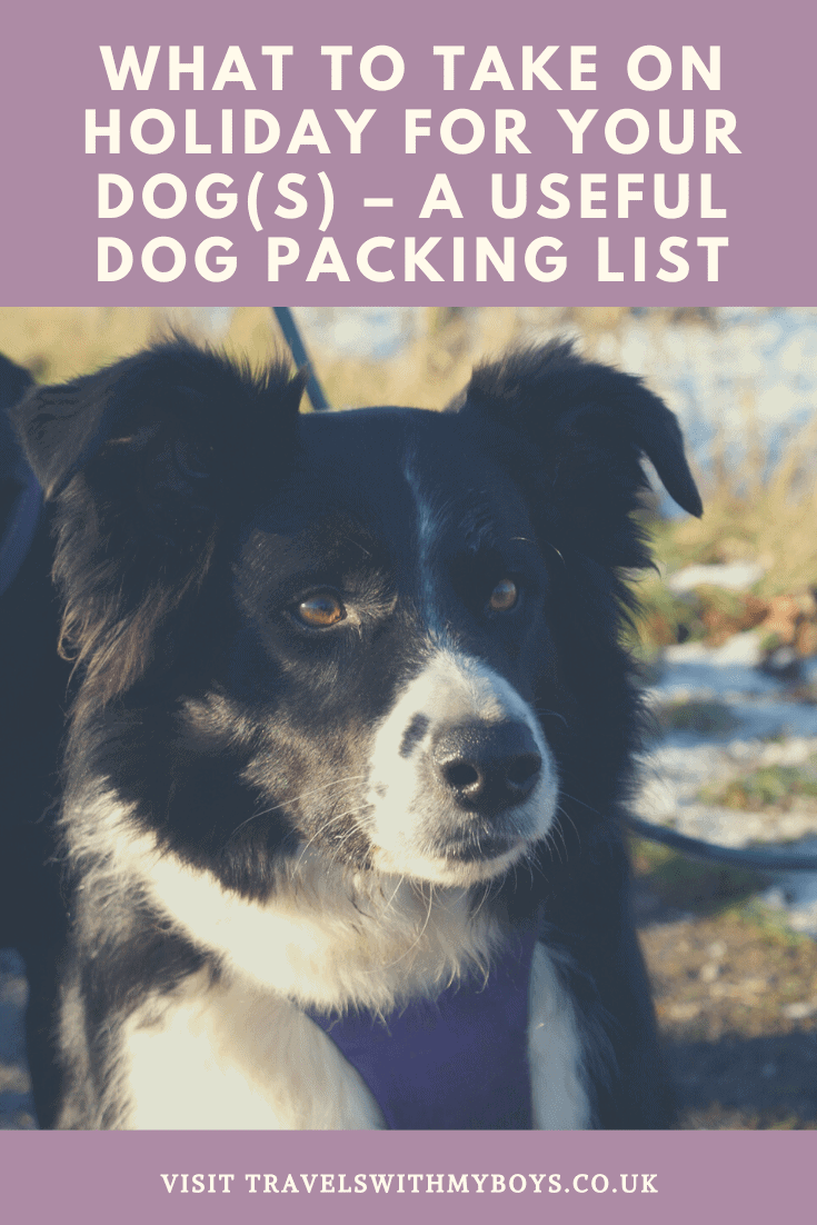 What to take on holiday for your dog | Dog packing list for a holiday with dogs