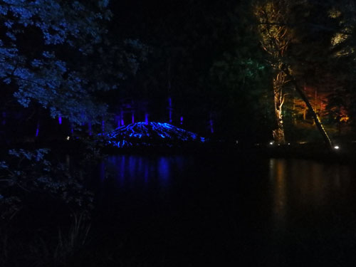 Reflections in the water at the enchanted forest