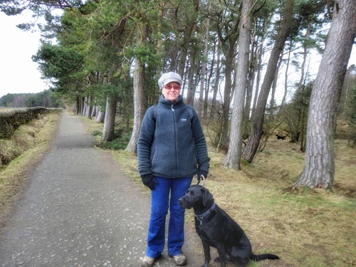 Dog walker with her Labrador at Harlaw Reservoir