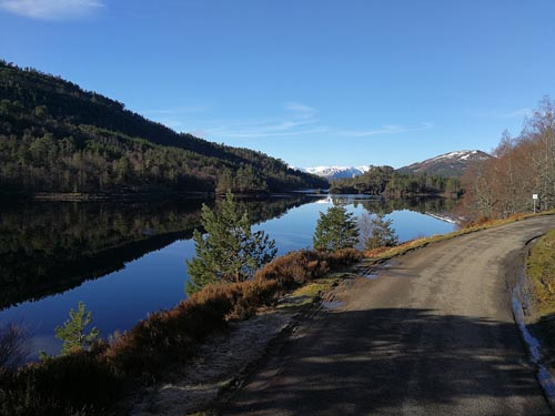 Glen Affric Views