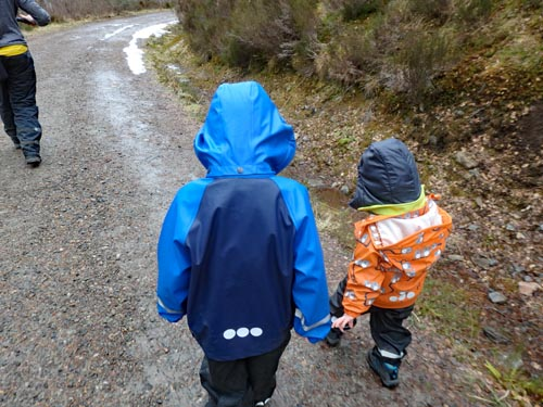 Walking the Viewpoint Trails at Glen Affric