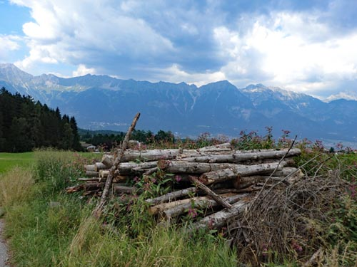 Logs in foreground with mountains in distance