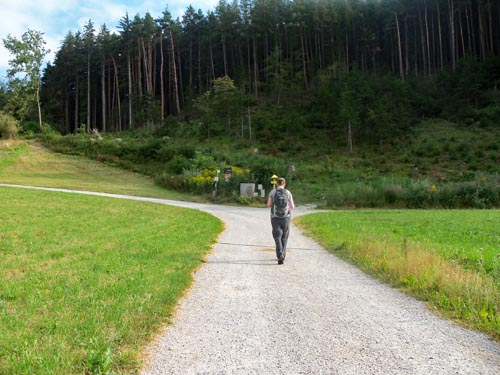 hiking trail in Igls