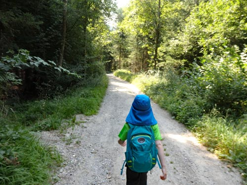 child hiking in Austria